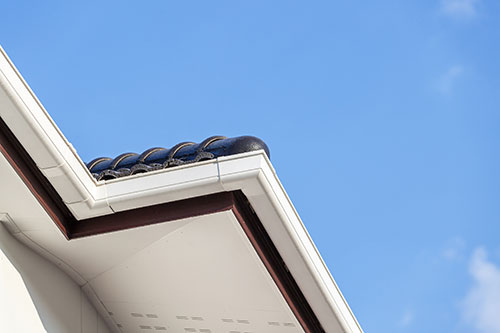 Gutter and Roof Edges